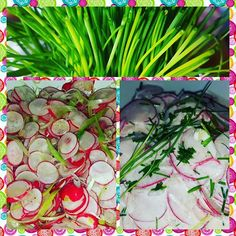 Just more colours  #radishes #chives #springonion with and without #soycream. Make your choice   #greenstuff #vegankitchen #vegan #vegansofig #vegansofinstagram #veganfood #vegano #vegans #veganmeals #veggies #greenstuff #healthyfood #yummie #nomeat #veganeating #veganeats #whatveganseat #plantbased #plantbasedfood