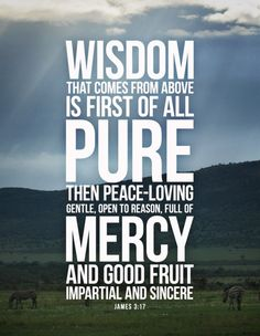 James 3:17 But the wisdom from above is first of all pure. It is also peace loving, gentle at all times, and willing to yield to others. It is full of mercy and good deeds. It shows no favoritism and is always sincere. 18 And those who are peacemakers will plant seeds of peace and reap a harvest of righteousness.