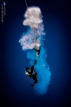 e689c8c20c36a2 Defying Depth... by Jacques de Vos on 500px Underwater Images, Underwater  Photography
