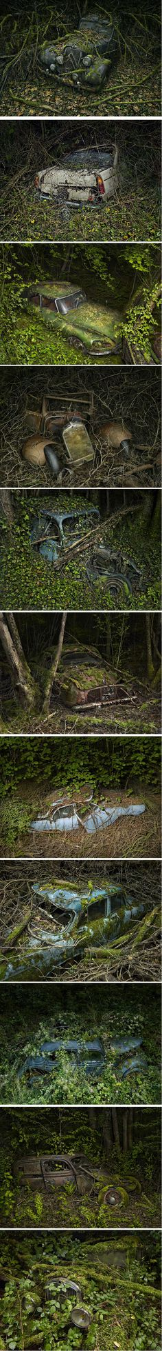 PeterLippmann.com .#jorgenca Why doesn't some Government office clean up the mess, reclaim the metal and stop ruining the environment. Drove through West Virginia, so proud of their scenery and wrote to ask about the many old cars by the roadside, obviously there for a long time. Hardly scenic.