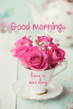 Good Morning Picture, Good Morning Flowers, Good Morning Wishes, Good Morning Images, Morning Pics, Morning Pictures, Beautiful Roses, Pretty In Pink, Beautiful Flowers