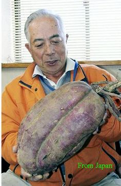 Oh that is nothing to worry about  It's normal... Fukushima had nothing to do with your vegetables size... Look how much more you have to eat   THE PEOPLE OF JAPAN AND OF THE ENTIRE NORTHERN HEMISPHERE DESERVE THE TRUTH ‼️
