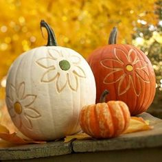 Summer still blooms when you translate flower motifs to autumn pumpkins. Use an apple corer to cut flower centers, and carve petal designs with a triangle clay loop tool, available at some crafts stores or through pottery supply stores online. Swap flower centers among different - color pumpkins for whimsical contrast.