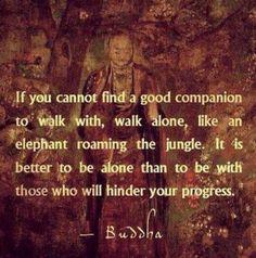 I'll take a good companion, but life isn't so bad walking alone.