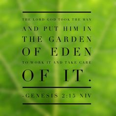 1. The Lord God took the man and put him in the Garden of Eden to work it and take care of it. – Genesis 2:15 NIV