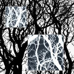 Frikkx - Series in Monochrome - Image 4