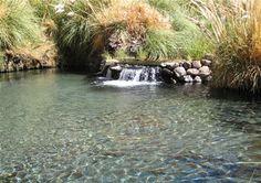 Waterfalls of zoar valley 12 falls gowanda new york - Beatty park swimming pool opening hours ...