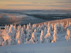 View from Levi skiing resort towards the Pallas fells Snowboarding, Skiing, Finland, Mountains, Landscape, World, Book, Winter, Nature