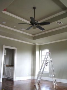 1000 Images About Tray Ceiling On Pinterest Ceilings Traditional Bedroom And Trays