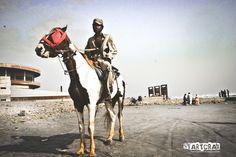django with a horse Horses, Photography, Horse, Photograph, Fotografie, Words, Fotografia, Photoshoot