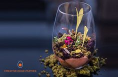 #dreamdinners Chocolate Rocks, Chocolate Cupcakes, Pastries Recipes, How To Make Terrariums, Cooking Stuff, Cacao Nibs, Till Death, Potting Soil, Edible Garden