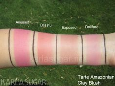 Tarte Amazonian Clay Blush Swatches