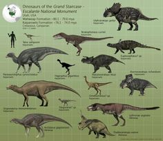 Dinosaurs of the Grand Staircase : Escalante - PaleoGuy on DeviantArt Prehistoric Wildlife, Prehistoric Creatures, Prehistoric Dinosaurs, Reptiles, Mammals, Dinosaur Park, Extinct Animals, Natural History, Grand Staircase