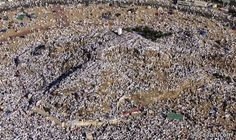 Ezzouar: The Best Supplication is that of the Day of Arafah...