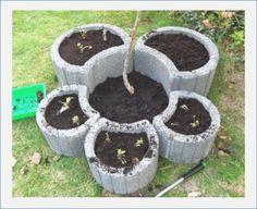 / … – ideas for garden plants - Bepflanzung Balcony Plants, Garden Plants, Garden Beds, Garden Art, Small Space Interior Design, Garden Stones, Plantation, Garden Furniture, Beautiful Gardens