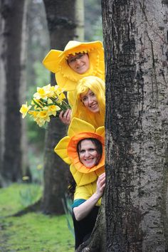 Show your company cares by registering at www.cancer.ie/ourcompanycares. Daffodil Day takes place on Friday March 22nd Daffodil Day, Daffodils, Cancer, March, Friday, Princess Zelda, Fictional Characters, Fantasy Characters, Mac