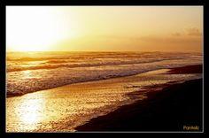 Zacharo beach- Kaiafas beach [Peloponissos, Greece]! Kilometres of golden sand and clear blue sea! MUST SWIM THERE!