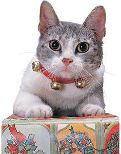 Handmade Shaded Blue sparkle safety kitten cat collar fabric bell
