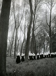 Willy Ronis. Procesionaria, 1951