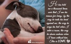This is LOVE! <3  Donate to animal shelters and show your love!  http://www.realestatewithcauses.org/donate-real-estate.htm