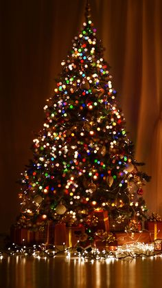 Christmas Day, Christmas Tree, Christmas Lights, Christmas Decoration Wallpaper for Android [Full HD], Holidays & Events Background and Image Christmas Tree Wallpaper Iphone, Xmas Wallpaper, Winter Wallpaper, Cute Christmas Backgrounds, Christmas Lights Background, Christmas Aesthetic Wallpaper, New Year Wallpaper, Christmas Tree Farm, Winter Christmas