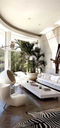 Blog MiDá | Arquitetura e Decoração: Zebra