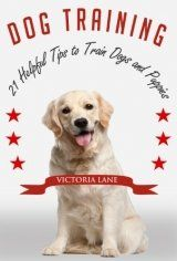 Dog Training: 21 Helpful Tips to Train Dogs and Puppies (How to Train a Dog or Puppy)