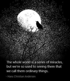 The whole world is a series of miracles, but we are so used to seeing them that we call them ordinary things. -- Hans Christian Andersen