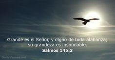 Grande es el Señor, y digno de toda alabanza; su grandeza es insondable.