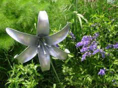 Single metal lily sculpture against spring fennel and bluebells in the garden www.ironvein.co.uk