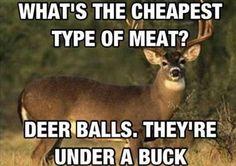 Horrible redneck humor, couldn't help it tho. Deer Hunting Memes, Funny Hunting Pics, Funny Deer, Hunting Stuff, Bow Hunting, Hunting Signs, Squirrel Hunting, Women Hunting, Hunting Cabin