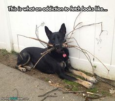 He looks like the Branch Manager.