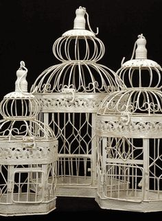 Cream White Bird Cages (Set of 3). Entwined with flowers. Centerpieces, head table, aisle.