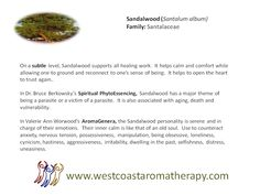 Sandalwood EO Subtle Uses West Coast Aromatherapy - Google+