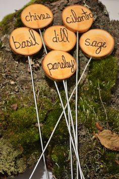 8 Garden Marker Stakes, herb or vegetable garden marker stakes, rustic,wood with metal stakes, salvaged,  eight for 26.75, custom lettering, on Etsy, $26.75 CAD