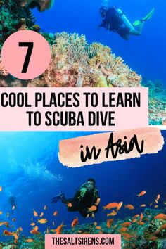 7 Cool Places to Get Scuba Certified in Southeast Asia - The Salt Sirens Scuba Destinations, Learn To Scuba Dive, Diving School, Dive Resort, Travel Sights, Reef Shark, Gili Island, Backpacking Asia, Diving Course