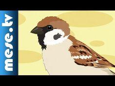 Gryllus Vilmos : Verebek (gyerekdal, mese, Félnóta sorozat) Tree Day, Bird Tree, Rooster, Birds, Winter, Trees, Animals, Youtube, Winter Time