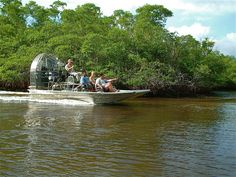 Take an airboat ride through the Everglades.