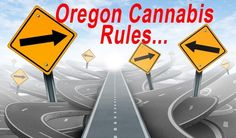 """By Keith Mansur Oregon Cannabis Connection  December 4, 2016 — Oregon's Revised marijuana testing rules are worse than previous ones says Hovering the CEO of Elbe's Edibles. The revised testing rules released by the Oregon Health Authority, the agency in charge of the state's cannabis testing regulations, were intended to """"lower... #highercost #newcannabisregulations #revisedoregontestingrules"""