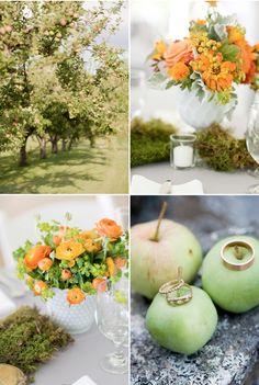 maine wedding by corbin gurkin    Love the idea of an apple orchard in maine<3