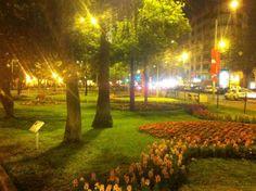 LIMA, PERU. Parque Kennedy,em bairro Miraflores. Por Ella L.