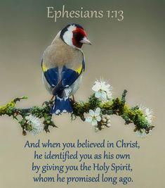 Ephesians 1:13 NLT