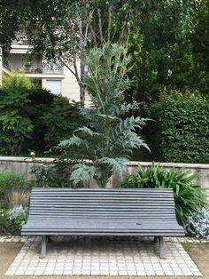 L'artichaut géant du parc de Passy (Paris 16e) http://www.pariscotejardin.fr/2016/06/lartichaut-geant-du-parc-de-passy-paris-16e/