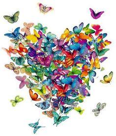 .Coração de Borboletas. …