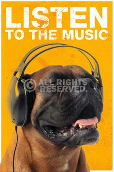 Maxi Poster  Listen to the music