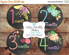 ON SALE Monthly Baby Girl Bodysuit Stickers,Baby Age Stickers,Monthly Baby Milestone Stickers,Baby Monthly Stickers,Baby Month Sticker,Baby by blueeyesdesigns27 on Etsy https://www.etsy.com/listing/189825151/on-sale-monthly-baby-girl-bodysuit