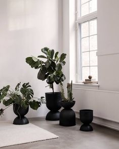 Ferm Living Hourglass Pot S Shallow Pots, Black Planters, Indoor Planters, Shallow Pot Plants, Room To Grow, Ferm Living, Bathroom Plants, Room With Plants, Indoor Plants