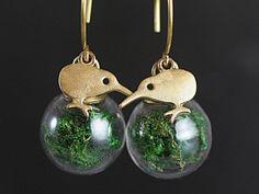 """Kiwi echtes Moos Ohrringe. Ein neues Schmuckstück aus unserer beliebten Kiwi Serie.   Die kleinen Vögel sind auf der Vorderseite von uns vergoldet. Sie """"stehen"""" auf stossfesten Glaskugeln mit echtem getrockneten und konserviertem Moos.  Besonders schön: Die Kiwis schauen sich an. Es gibt also einen Ohrhänger für das rechte Ohr und einen für das linke."""
