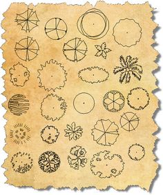 landscape design tree symbols - Google Search