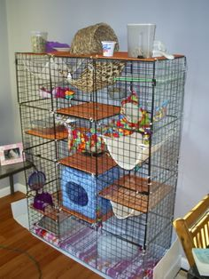 My rat cage / Rat-related comment: Covering the rats' Day Cage during daytime encourages them to be active. Also see aromatherapy with grapefruit scent. Chinchillas, Hamsters, Ferrets Care, Pet Rodents, Cute Ferrets, Baby Ferrets, Rat Cage Diy, Pet Rat Cages, Hamster Cages